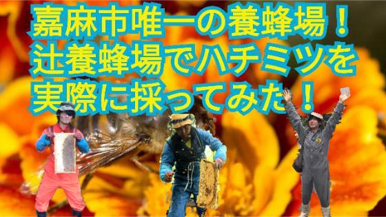 嘉麻市唯一の養蜂場!『辻養蜂場』でハチミツを実際に採ってみた!